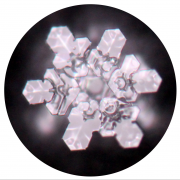 Kristallbildung durch CD 02