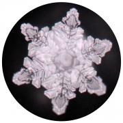 Kristallbildung durch CD 04