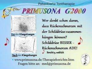 PRIMUSONA   Entscheidungshilfe 15